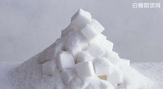 白糖期货运用