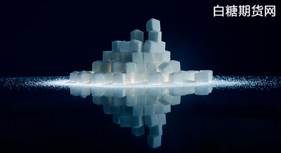 白糖期货价格分析