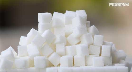 白糖实时行情