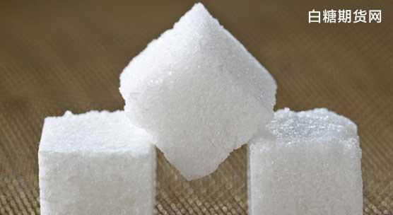 白糖价格预测行情分析