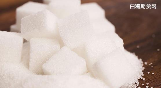 甘蔗新品种研发艰难,但深受制糖企业和蔗农认可