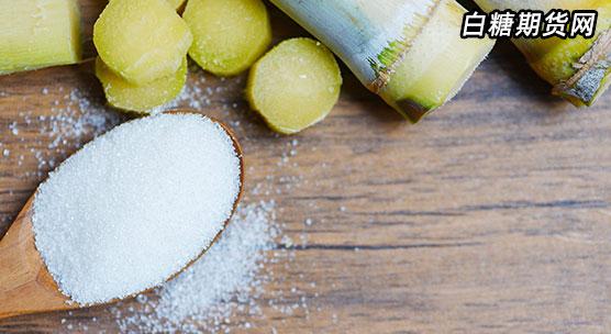 白糖现货价格